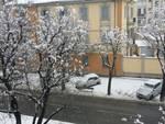 cuneo-corso-iv-novembre-neve