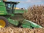 agricoltura generica mietitrebbia
