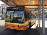 cuneo24 - autobus cuneo pullman