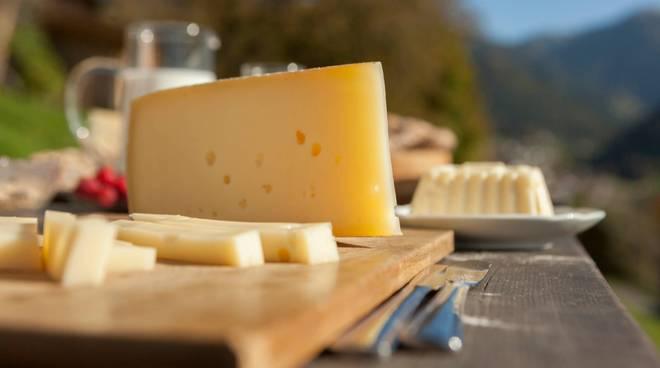 formaggi formaggio generica