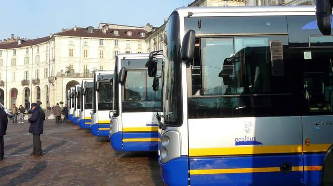 autobus gtt citelis