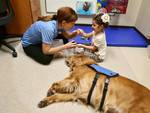 pet therapy cane ospedale