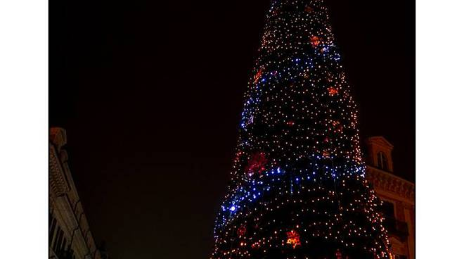 albero 2018 piazza gali