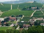 giordano vini valle talloria