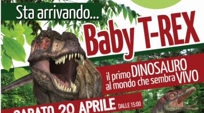dinosauro borgomercato