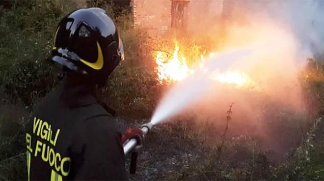 incendio bosco vigili del fuoco