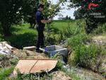 carabinieri forestali acque irrigue
