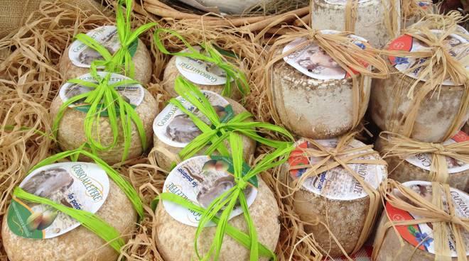 formaggi alpeggio (archivio atl cuneese)
