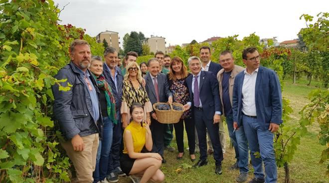 alba del vino 2019 abellonio bo