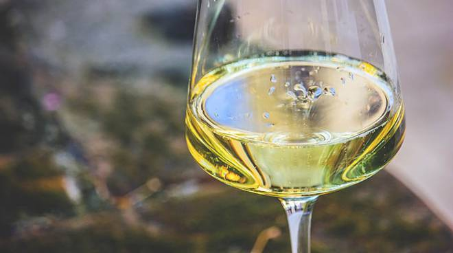 alta langa vino