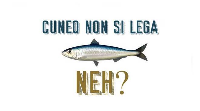 sardine-cuneo-18527