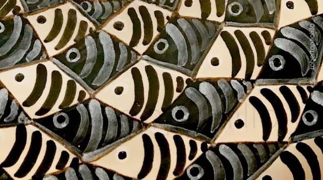 sardine-cuneo-18534