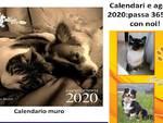 calendari 2020
