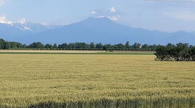 bisalta montagna grano
