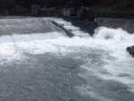 Generico maggio 2020traverse fluviali per scale di rimonta dei pesci