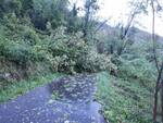 Alluvione Caprauna