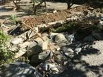 Ormea alluvione danni
