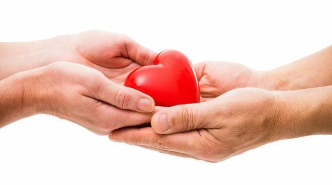 donazione organi cuore