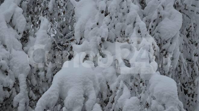 Neve Vicoforte 1°-2 dicembre 2020