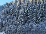 valle pesio sci
