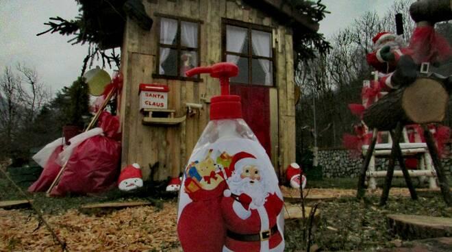 Natale Priola