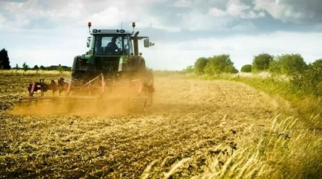 Agricoltura generico