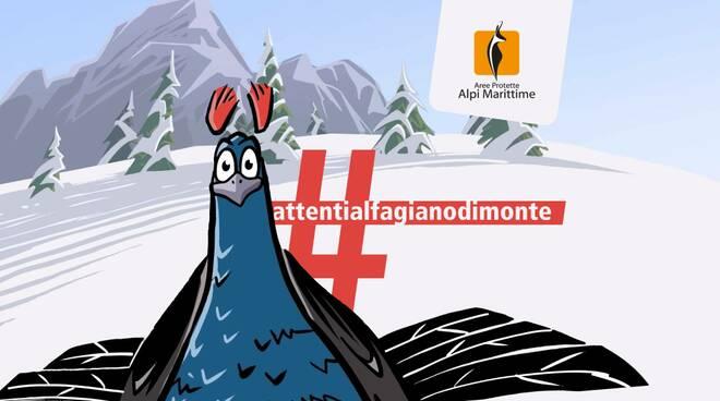 #attentialfagianodimonte _ cover campagna _ Illustrazione_ A. Segarra, su gentile concessione del Parc du Massif des Bauges