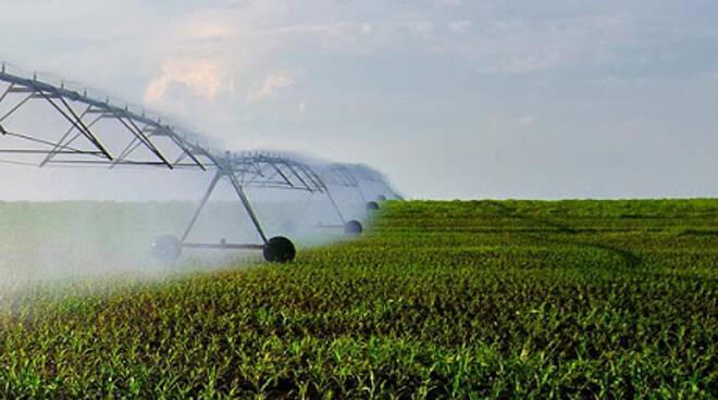 irrigazione coldiretti