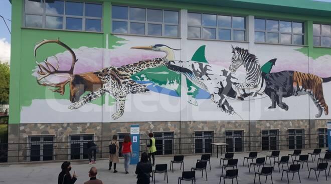 street art di Iena Cruz  scuola media  Madonna dell'Olmo