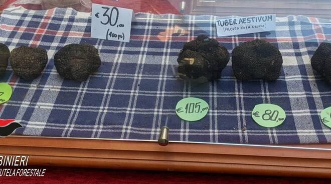 tartufi sequestrati
