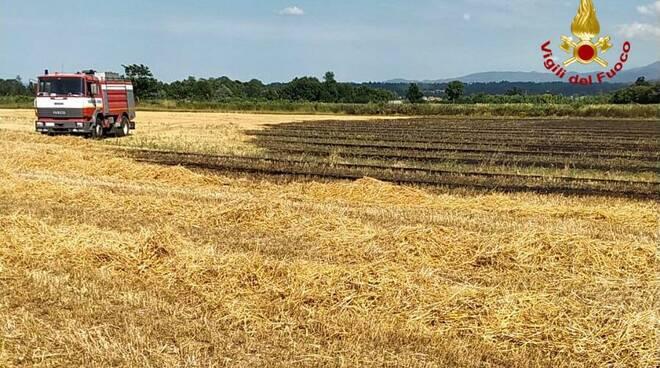 incendio campo di grano Margarita