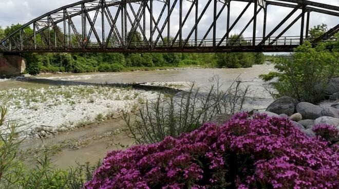 ponte del ciadel borgo