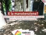 Radicali Cuneo